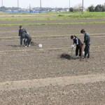 菰野竹粉施与試験田調査(2017年4月16日)その1
