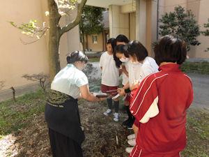 校内での土壌調査(1)
