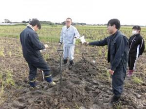 土壌調査の様子(1)