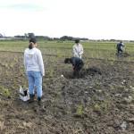 土壌調査の様子(2)