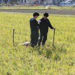 堂ヶ山町の水田での土壌調査(1)