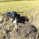 堂ヶ山町の水田での土壌調査(3)