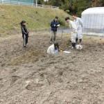 実験ほ場での土壌調査実習(3)