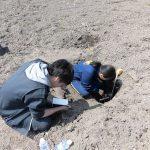 堂ヶ山町の水田での土壌調査(2) 土壌断面調査