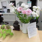 トルコギキョウを展示しています (4) 会計課カウンター