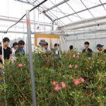 飯舘村「花卉生産農家見学」