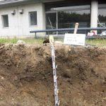 基礎演習bで土壌調査を実施(4)