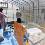 温泉水自動灌漑装置製作中(1)