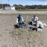 堂ヶ山町の水田で春の土壌調査を実施(2)