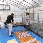温泉水自動灌漑装置の給水量を検定(2)