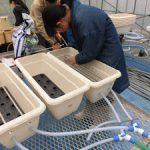 トルコギキョウ根域冷却システム作成(2)