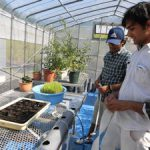 水耕栽培システム(1)