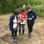 土壌調査演習(3)